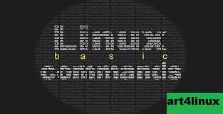Perintah Dasar Linux untuk Memeriksa Informasi Hardware dan Sistem